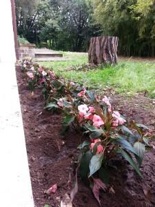 Giardino Superiore 2