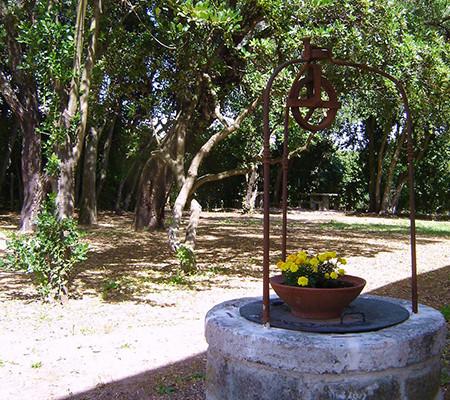 http://www.agriturismocasalezuccari.com/wp-content/uploads/2015/06/pozzoallori-l-450x400.jpg