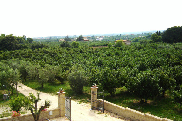http://www.agriturismocasalezuccari.com/wp-content/uploads/2015/06/vedutaentrata-600x400.jpg